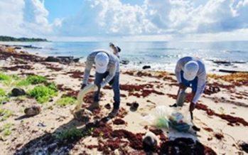 Realizan limpieza de playas en Xcacel-Xcacelito; levantan plásticos, vidrio y otros desechos
