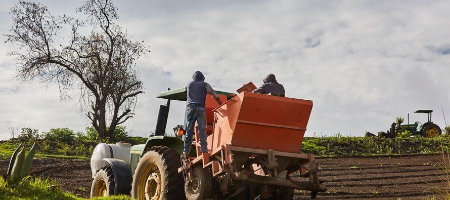 No hay duda: el alevado uso de plaguicidas altamente tóxicos en la Península de Yucatán genera graves problemas de salud, advierte Jaime Rendón de la UA de Campeche