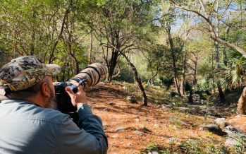 En Tamaulipas en 2021, se realizará el Primer Congreso Internacional de Fotografía de Naturaleza en México
