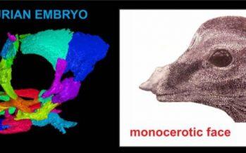 El primer cráneo casi intacto de un embrión de saurópodo en 3D revela rasgos faciales inesperados