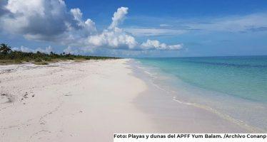Gobierno mexicano mantiene la protección y conservación del Área de Protección de Flora y Fauna Yum Balam