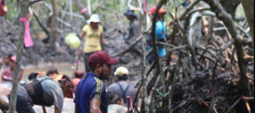 """Conafor y Reforestamos México abren convocatoria al Concurso Nacional de Fotografía """"Visión Forestal y Centinelas del Tiempo"""""""