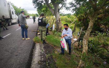 Aseguran 42 tortugas de tres especies, en el tramo carretero Villahermosa-Tabasco, municipio de Centla