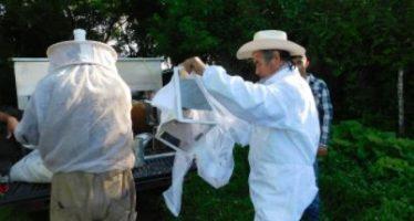 La Dirección de la Reserva de la Biósfera Marismas Nacionales Nayarit impulsa la apicultura en los manglares