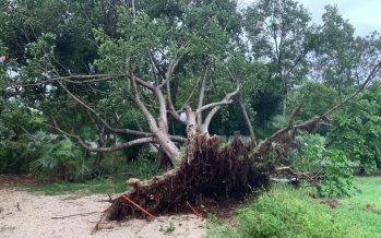 Mantendrán cerradas zonas arqueológicas del sureste afectadas por huracán Delta