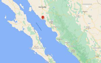 En Guaymas, entregan extensión de permisos de pesca comercial para camarón de altamar, ribereño y especies de escama marinas y lisas