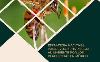 Estrategia nacional para evitar riesgos al ambiente por los plaguicidas en México