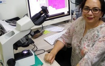 ¡Pésima noticia! El SARS-CoV-2 puede dañar el páncreas y provocar diabetes: Ma. Isabel Salazar (IPN)